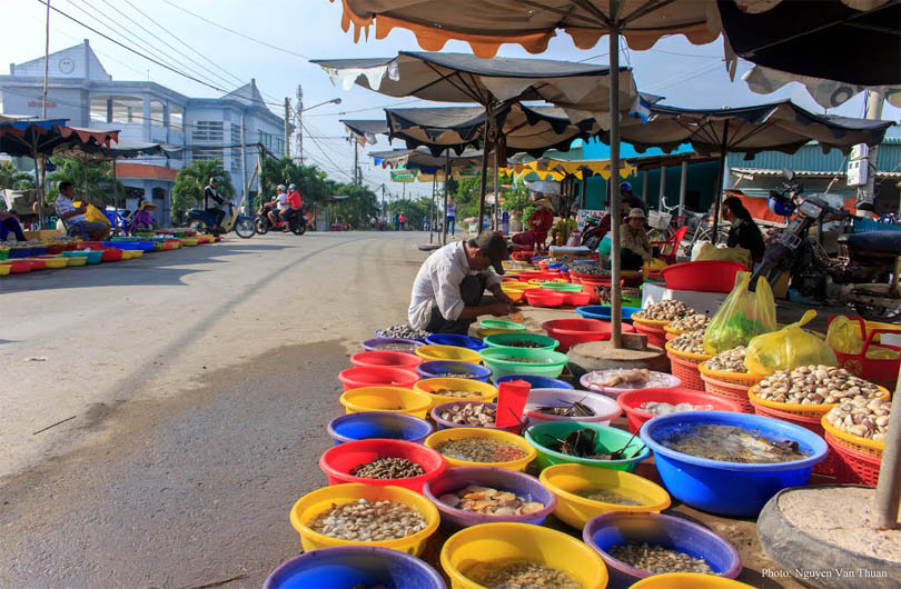 Rural Mekong Delta and Floating Markets