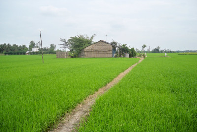 Mekong Delta Rural Life Experience
