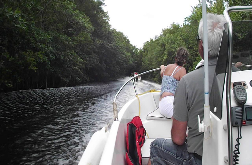 Can Gio Mangrove Forest by Speedboat