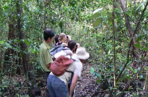 Explore Nam Cat Tien National Park
