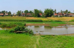 cambodia-kratie-countryside-4