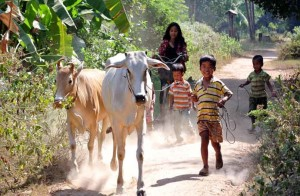 Best of Cambodia and North Vietnam