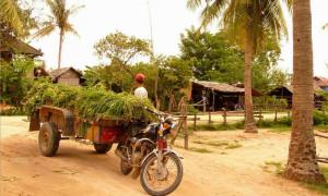 cambodia-tonle-bati-4