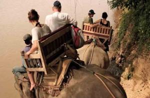 laos-elephant-tour-2