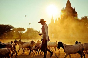 Yangon and Bagan Tour