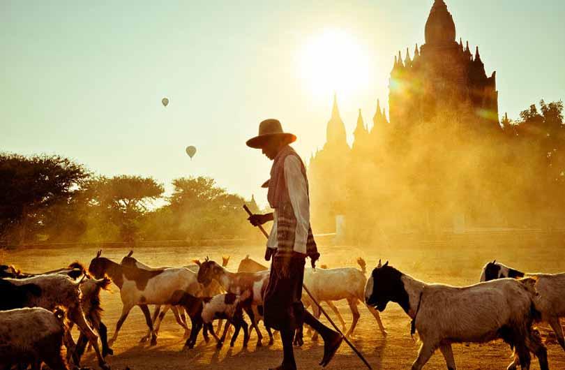 Yangon and Bagan Tour