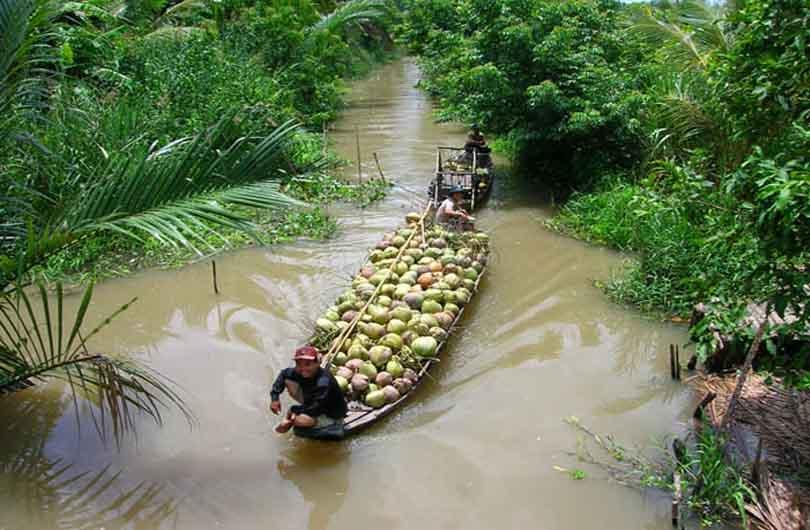 vietnam ben tre coconut canal