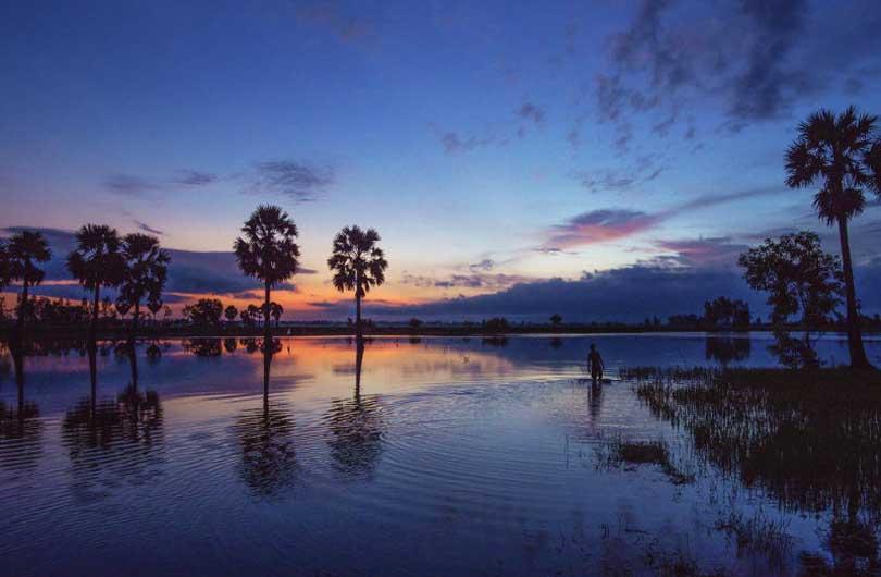Southern Vietnam in Focus