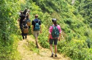 vietnam-sapa-trekking