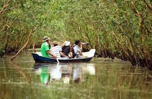 vietnam-tra-su-bird-sanctuary