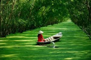 Vietnam and Cambodia Highlights
